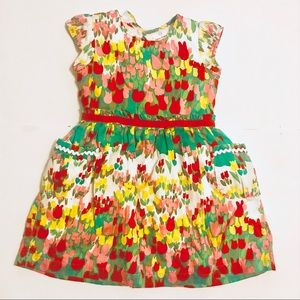 Hanna Andersson Floral Girls Dress